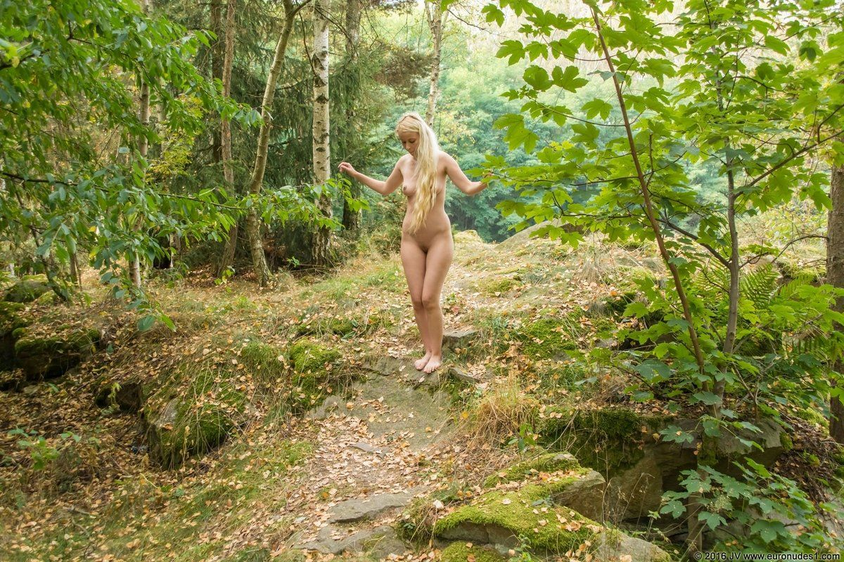 Naked Girl In The Woods Images, Stock Photos Vectors